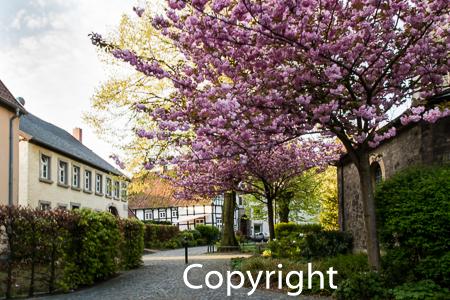 1517a Kirchplatz Bad Laer