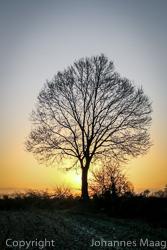1289a Sonnenaufgang
