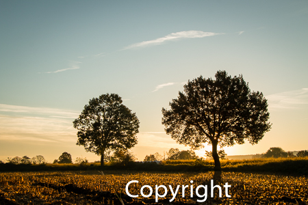 1530a Sonnenaufgang