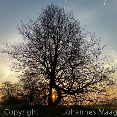 893a Sonnenaufgang, Remsede, Bad Laer
