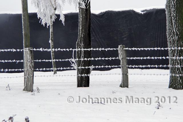0009 Stacheldraht im Schnee