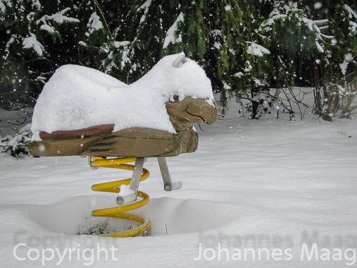 0465a Federwippe im Schnee