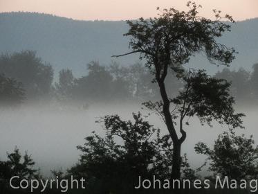 1023a Morgennebel, Remsede
