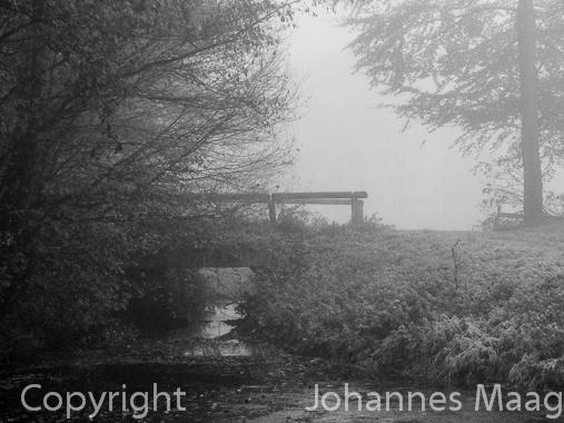 750a Brücke im Herbst, Remsede, Bad Laer